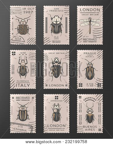 Vintage Colored Insects Stamps Set With Dragonfly Different Types Of Bugs And Beetles Isolated Vecto