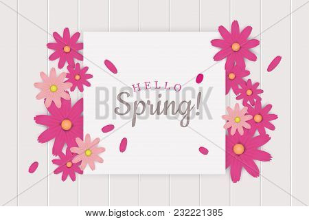 Hello Spring Greeting Card Decoration With Marguerite Daisies Flower. Vector Illustration.