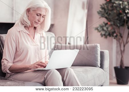 Lets Find Something. Busy Aged Gray Haired Woman Sitting At Home On The Sofa Working With The Laptop