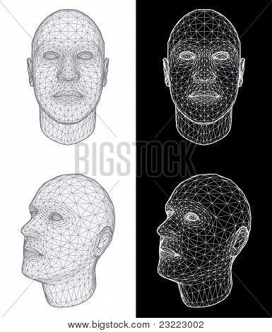 Human Head. Vector Illustration