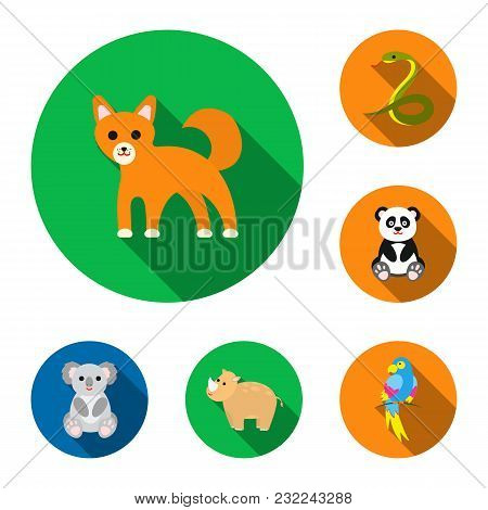 An Unrealistic Animal Flat Icons In Set Collection For Design. Toy Animals Vector Symbol Stock  Illu