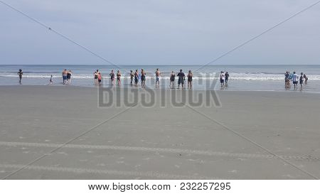 People Standing Along The Shoreline And Looking Out Into The Atlantic Ocean After A Shark Had Been S