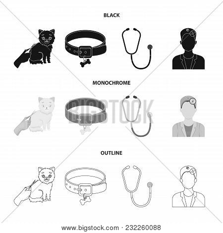 Collar, Bone, Cat, Haircut .vet Clinic Set Collection Icons In Black, Monochrome, Outline Style Vect