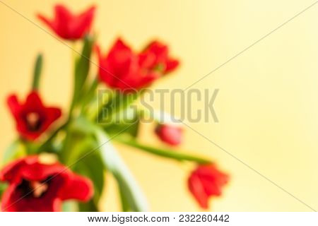 Blurred Floral Background With Red Tulips On Yellow Background.