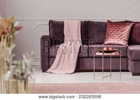 Woman's Living Room Interior