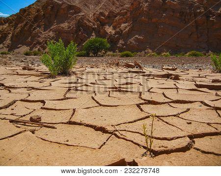 Dry Earth Texture Pattern National Park Llanos De Challe Atacama Chile Sout America
