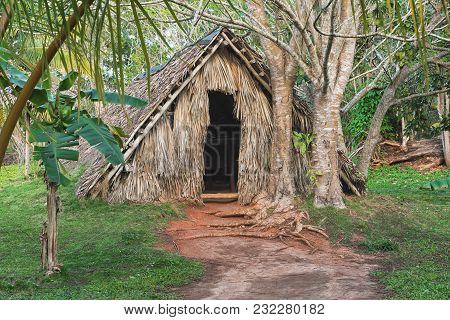 Picture Of Old Abandoned Hut In The Tropical Forest