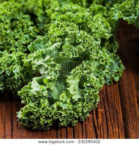 Kale Or Green Leaf Cabbage. Selective Focus.