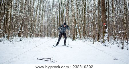 Photo Of Male Skier In Gray Jacket In Winter Forest