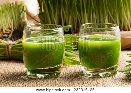 Two Shots Of Barley Grass Juice With Fresh Homegrown Barley Grass