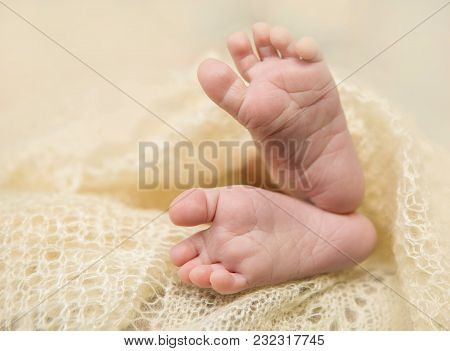 Legs Of A Newborn From Under The Shawl, Wonderful Little Heels Of A Baby