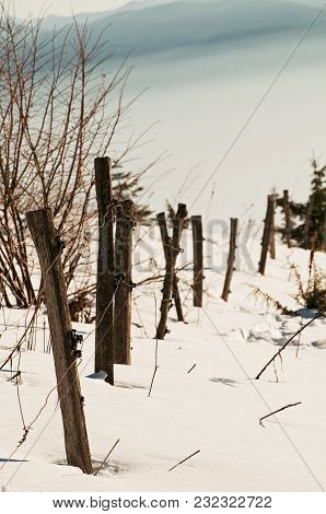 Old Wooden Livestock Fence In The Winter