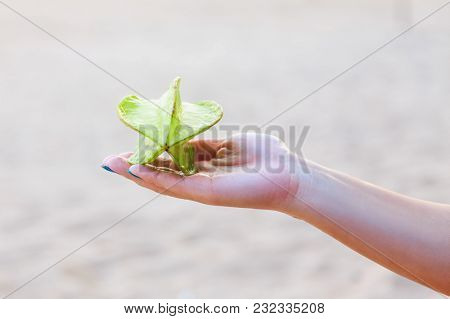 Whole Exotic Green Carambola Fruit On A Female Hand