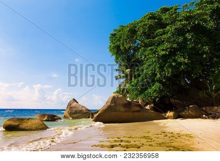Sands of White Sunshine Coast