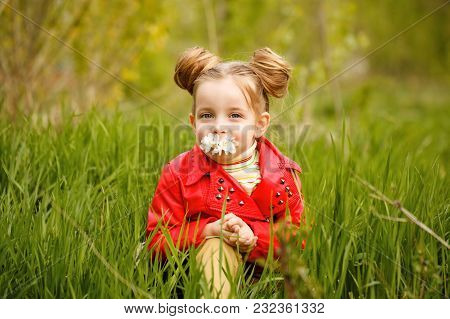 Little Girl Is Sitting In The Tall Grass And Sniffing The First Daisy. Happy Childhood. Spring Mood