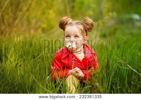 Little Girl Sitting In Tall Grass And Smelling The First Daisy. Happy Childhood. Spring Mood