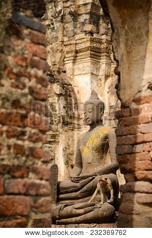 Beautiful Rock Buddha Image With Monkey In Ruined Historical Public Park Of Thailand