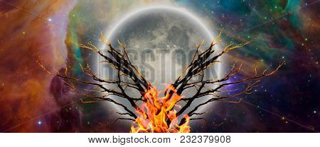 Mystic tree with bonfire in moonlight. Vivid universe. 3D rendering