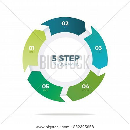 Five Step Circle Infographic On White Background