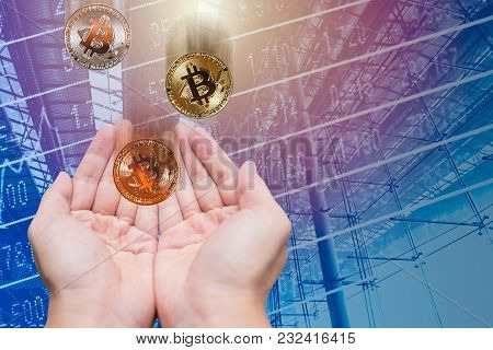 Grab And Keeping Profit From Bitcoin Digital Cryptocurrency Value Price With Ico