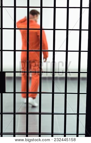 Rear View Of Prisoner In Prison Cell With Metallic Bars On Foreground