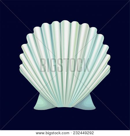 Scallop Seashell, An Empty Shell Of A Sea Mollusk Vector Illustration Isolated On A Dark Blue Backgr