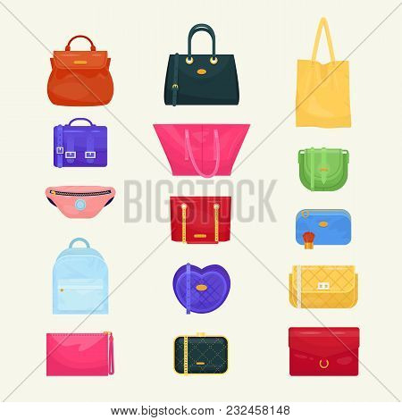 Woman Bag Vector Girls Handbag Or Purse And Shopping-bag Or Baggy Package From Fashion Store Illustr
