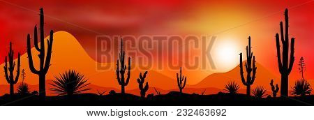 Sunset Sun In A Stony Desert. Silhouettes Of Stones, Cacti And Plants. Desert Landscape With Cacti.