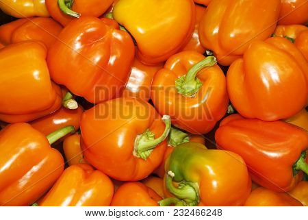 Background - Bright Yellow Ripe Fruits Of Sweet Capsicum Bell Pepper