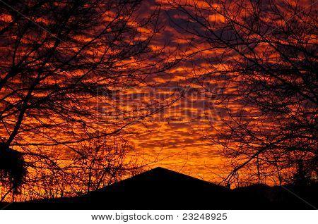 Orange Backyard Sunset