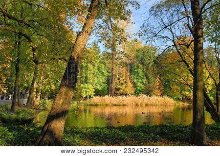Park during autumn season. People faces unrecognisable.