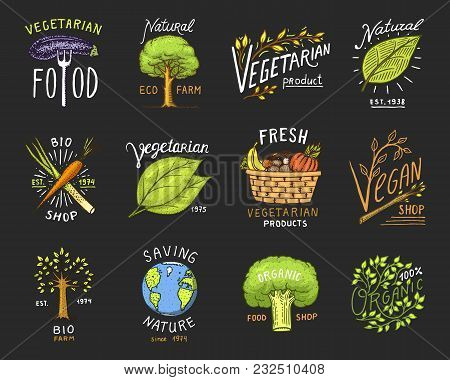 Healthy Organic Food Logos Set Or Labels And Elements For Vegetarian And Farm Green Natural Vegetabl