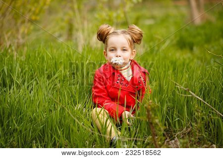 Little Girl Sitting In Tall Grass And Smelling The First Daisy. Happy Childhood. Spring Mood. She Is