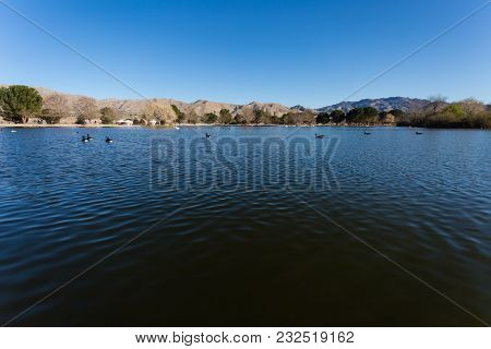 Beautiful Lake View Shot With Canadian Goose, Wild Ducks And Pelican Swims At The Lake. Desert Mount