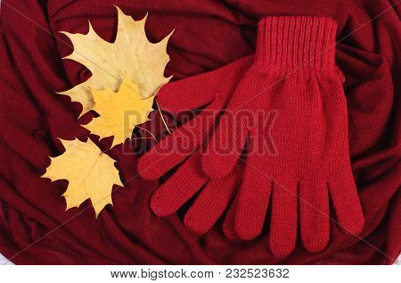 Womanly Gloves And Autumnal Leaves On Burgundy Shawl Background, Warm Clothing For Autumn Or Winter