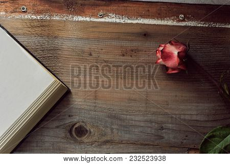 Dried Pink Rose And Old Open Book On Wooden Background, Copy Space/ Valentine-holiday Background