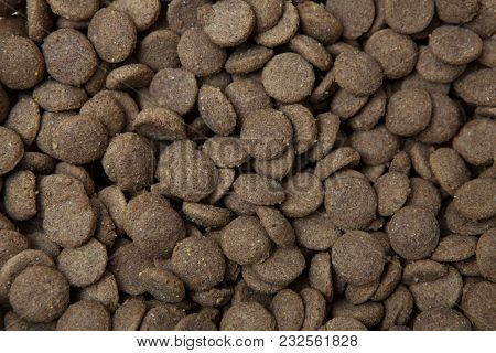 Close Up View Of Dry Dog Food.