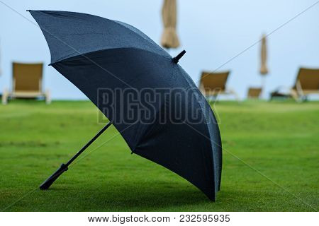 Black Umbrella Place On Green Grass Background. After Rain Time