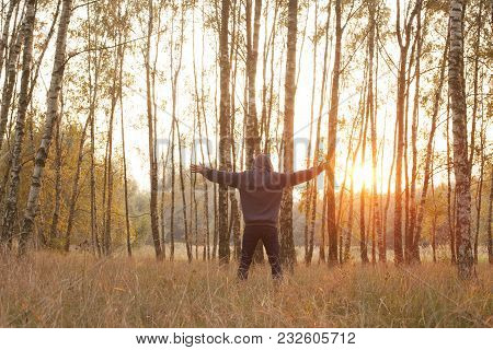 Happiness & Freedom. Happy Man With Hands Surrounded By Trees.