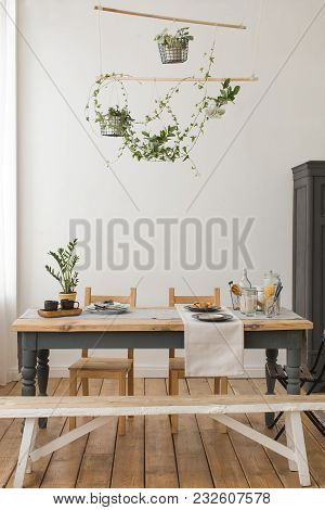 Cozy Interior Of Kitchen With Wooden Table And Cupboard And Bench And Green Plants In Decor