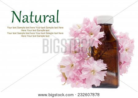 Natural Medicine -  Herbal Extract, Bottle. Natural Essential Aroma Oil - Medicine