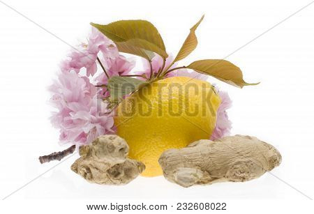 Lemon And Ginger Isolated On White Background. Lemon With Ginger  Natural Remedies.