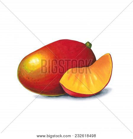 Mango On A White Background. Sketch Done In Alcohol Markets. You Can Use For Greeting Cards, Posters