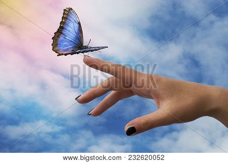 Beautiful Blue Butterfly Glides Towards The Outstretched Hand With Mystic Sky Background