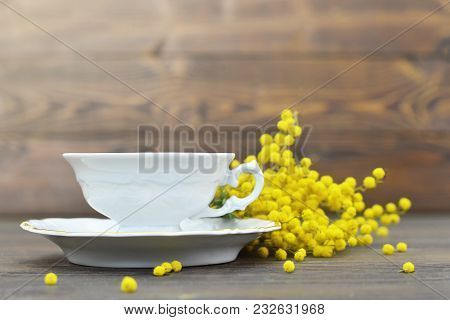 Tea Cup And Mimosa Flowers On Wooden Background