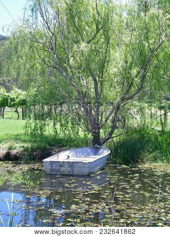 A Tin Boat On A Leaf-covered Pond. The Boat Is Tied To A Tree. Some Grape Vines Can Be Seen In The D