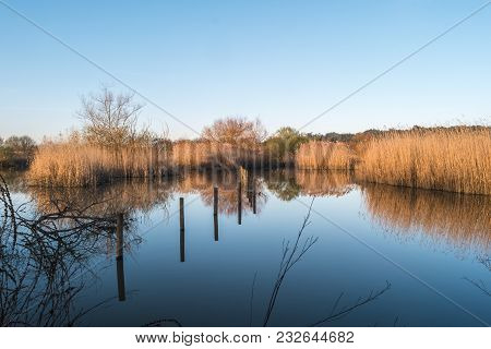 Water Reflection On Lagoon Park Of Pateira De Fermentelos,portugal.
