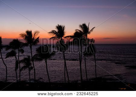 Sunset Over Palm Trees And Beach Cabanas At Mauna Lani Bay On The Big Island Of Hawaii.