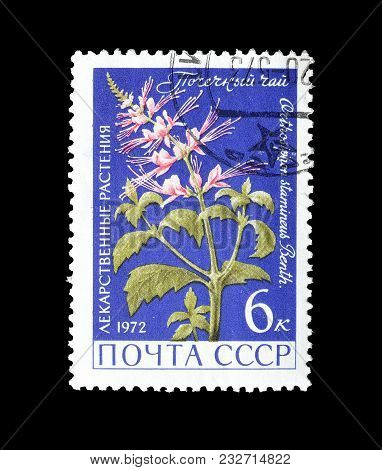 Soviet Union - Circa 1972 : Cancelled Postage Stamp Printed By Soviet Union, That Shows Java Tea Her