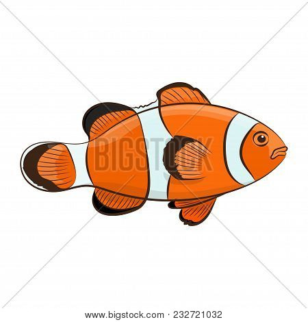 Happy Cartoon Clown Fish Over White Background. Vector Illustration.